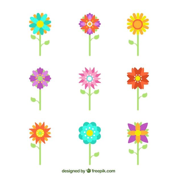 Coleccion De Nueve Flores De Primavera Descargar Vectores Gratis