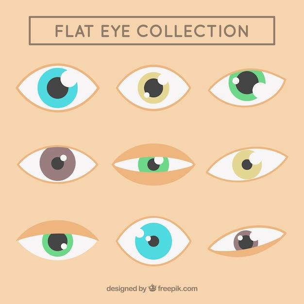 Colección de ojos hermosos en diseño plano vector gratuito