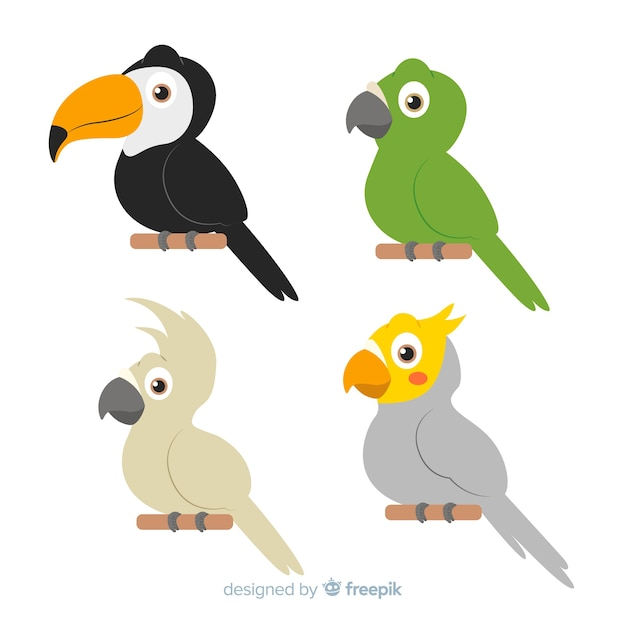 Colección de pájaros exóticos en diseño plano vector gratuito