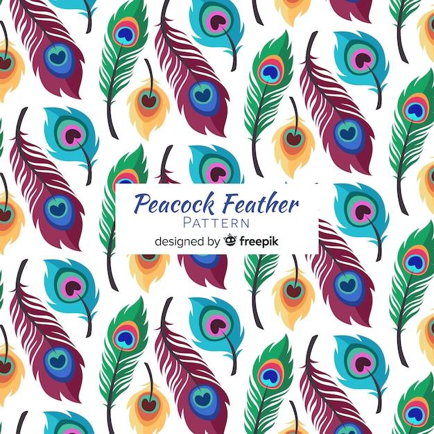 Colección de patrones de plumas de pavo real con diseño plano vector gratuito