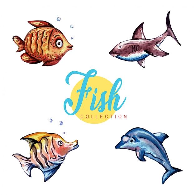 Colección de peces de acuarela Vector Premium