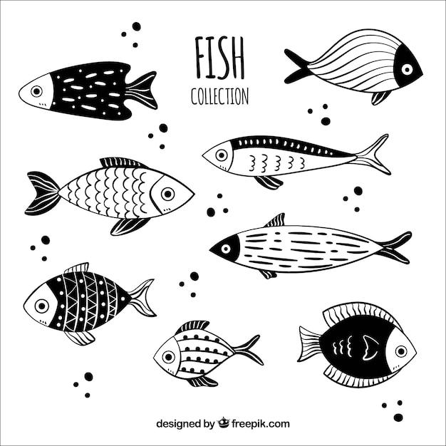 Colección de peces dibujados a mano blancos y negros vector gratuito