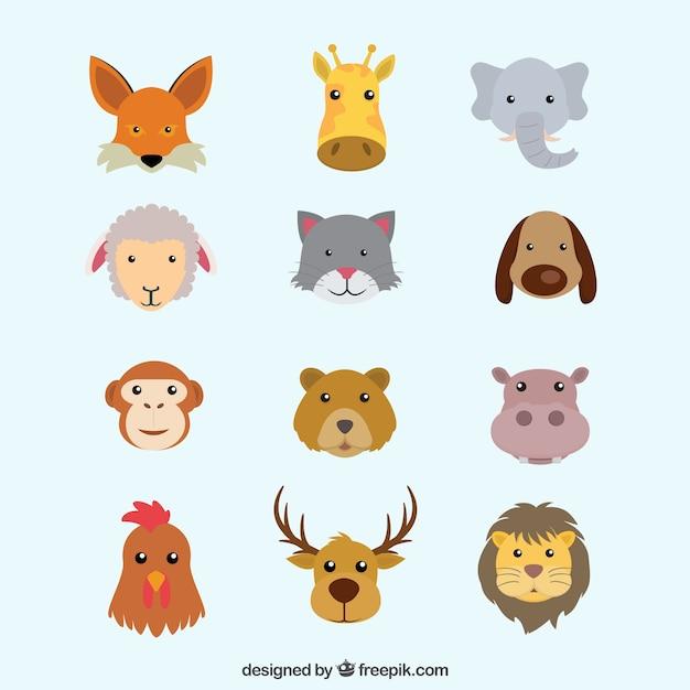 Plana De colección plana de cabezas de animales descargar vectores premium