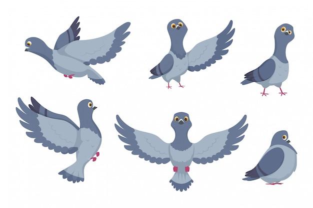 Colección de vectores de palomas de dibujos animados Vector Premium