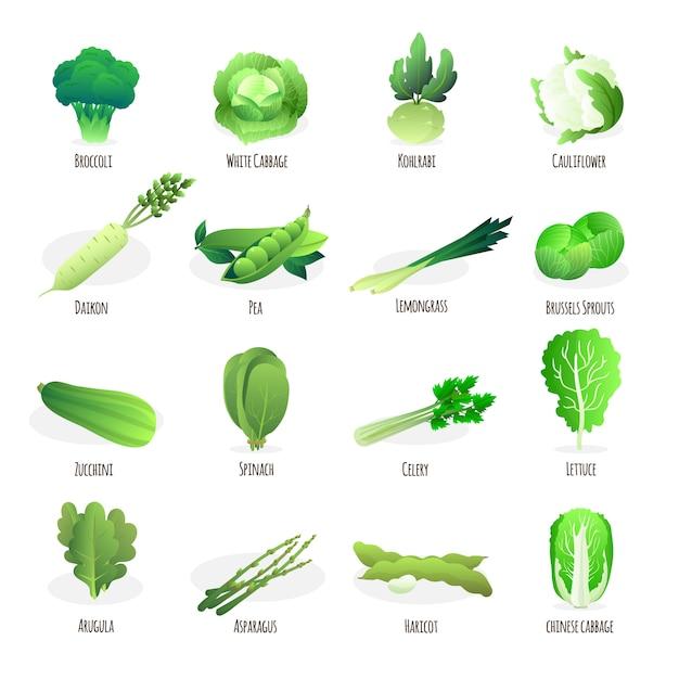 Colección de vegetales verdes vector gratuito