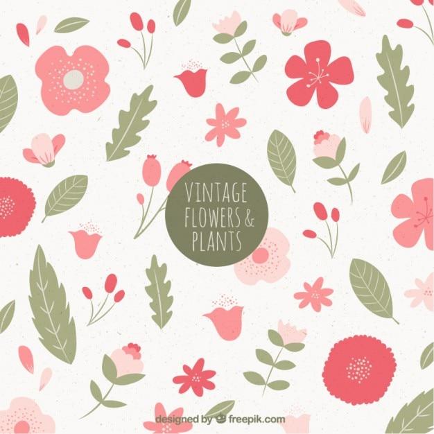 Colección vintage de flores y hojas | Descargar Vectores gratis