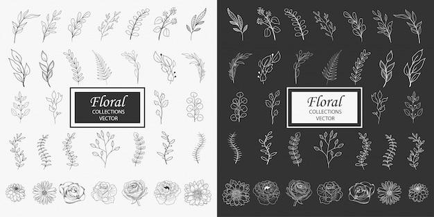 Colecciones de elementos florales dibujados a mano Vector Premium
