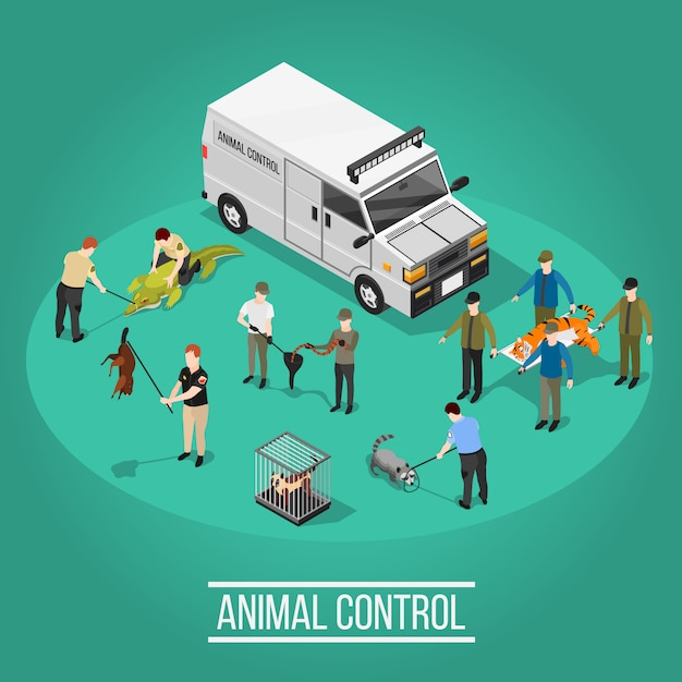 Composición isométrica de control animal vector gratuito