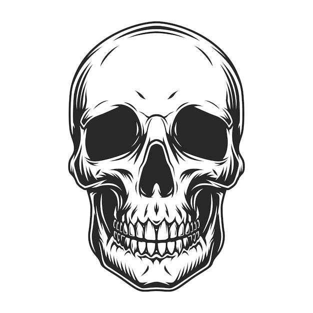 Concepto de cráneo humano vintage vector gratuito