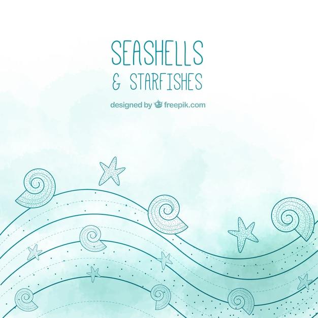 Conchas y estrellas de mar | Descargar Vectores gratis