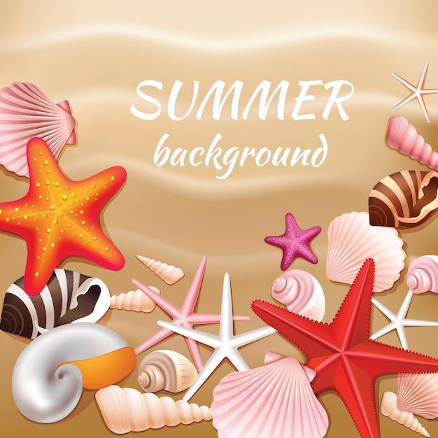 Conchas marinas y estrellas en la ilustración de vector de fondo beige arena verano vector gratuito