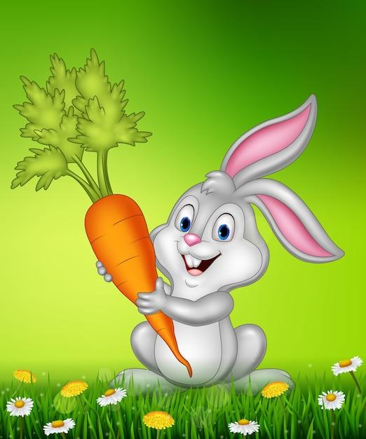 Conejo Con Zanahoria Vector Premium Que usted se alimenta del conejo el cual siguiente: https www freepik es profile preagreement getstarted 2538953