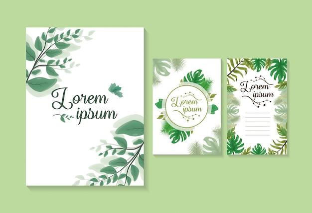 Conjunto de 3 tarjetas o invitaciones de hojas verdes, plantilla para personalizar con espacio para agregar texto vector gratuito