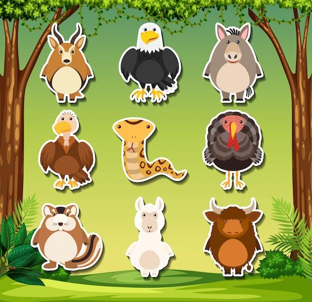 Conjunto de adhesivo de animales salvajes. vector gratuito