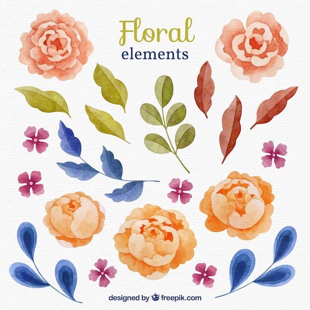 4c20f860b045c Conjunto adorable de elementos florales en acuarela