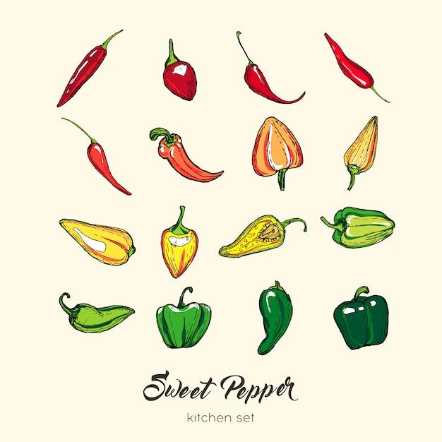 Conjunto aislado de pimienta. dibujado a mano ilustración pimentón dulce pimiento pimiento rojo pimiento picante Vector Premium