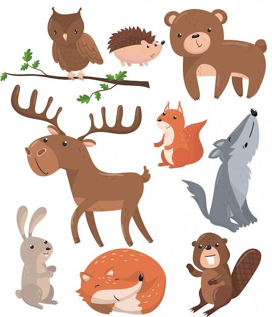 Conjunto de animales del bosque, bosque lindo animal búho pájaro, oso, erizo, ciervo, ardilla, lobo, liebre, zorro, castor ilustraciones de dibujos animados Vector Premium