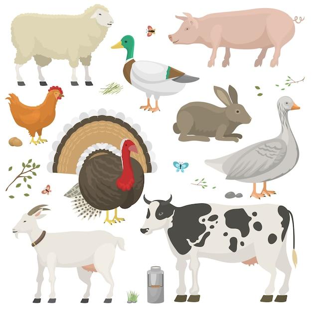 Conjunto de animales de granja. Vector Premium