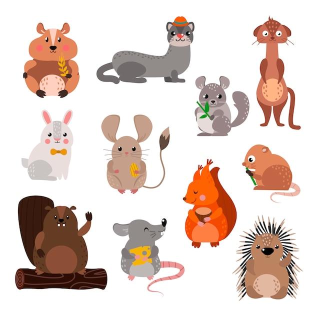 Conjunto de animales roedores dibujos animados. Vector Premium
