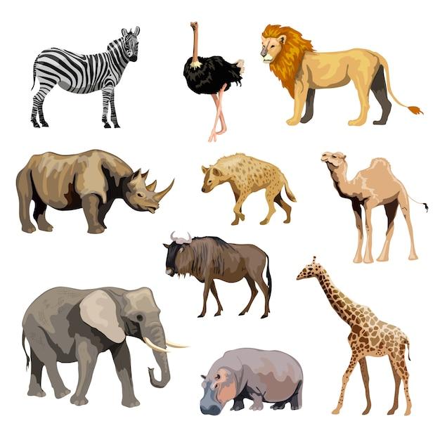 Conjunto de animales salvajes africanos vector gratuito