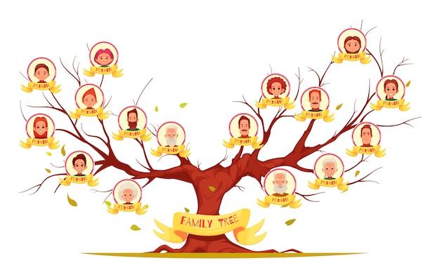 Conjunto de árbol genealógico de miembros de la familia, desde personas mayores hasta la ilustración de la generación joven vector gratuito