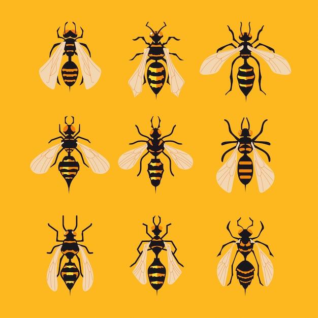 Conjunto de big hornet sobre fondo amarillo Vector Premium
