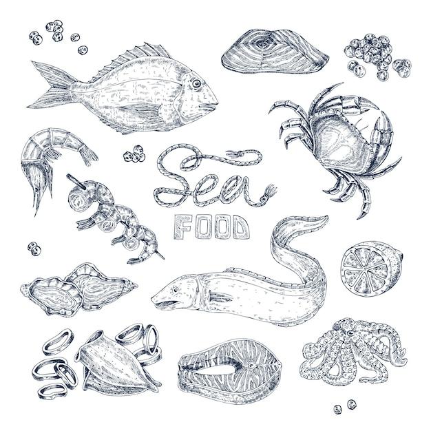 Conjunto de bocetos monocromáticos de mariscos vector gratuito