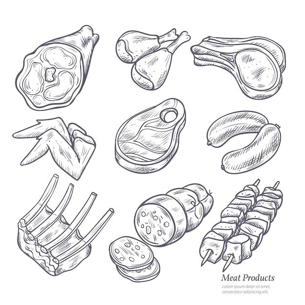 Conjunto de bocetos de productos cárnicos gastronómicos. vector gratuito