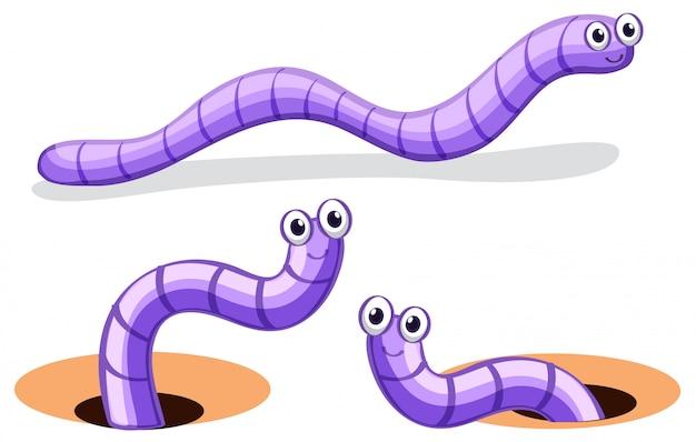 Conjunto de caracteres de gusano vector gratuito
