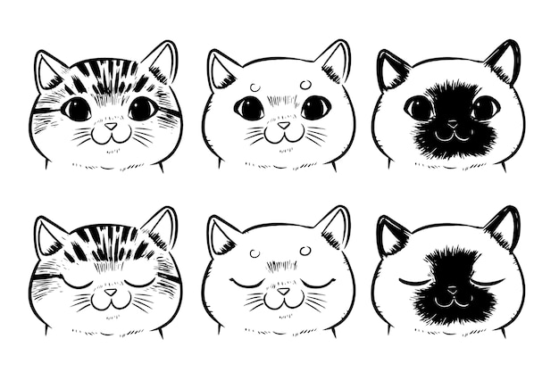 Conjunto De Caras De Gato De Dibujo Aisladas Sobre Fondo Blanco