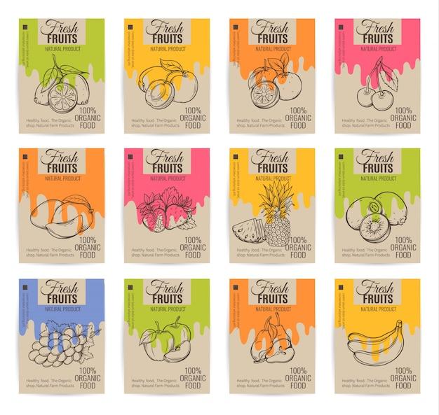 Conjunto de carteles de frutas dibujadas a mano. Vector Premium