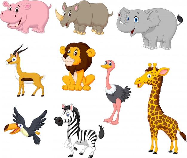 Conjunto de colección de animales salvajes de dibujos animados ...