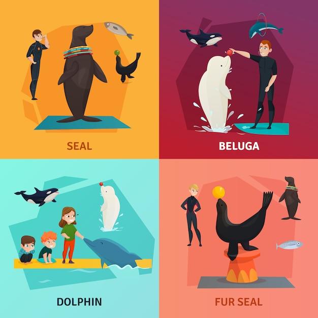 Conjunto de composición del espectáculo del delfinario vector gratuito
