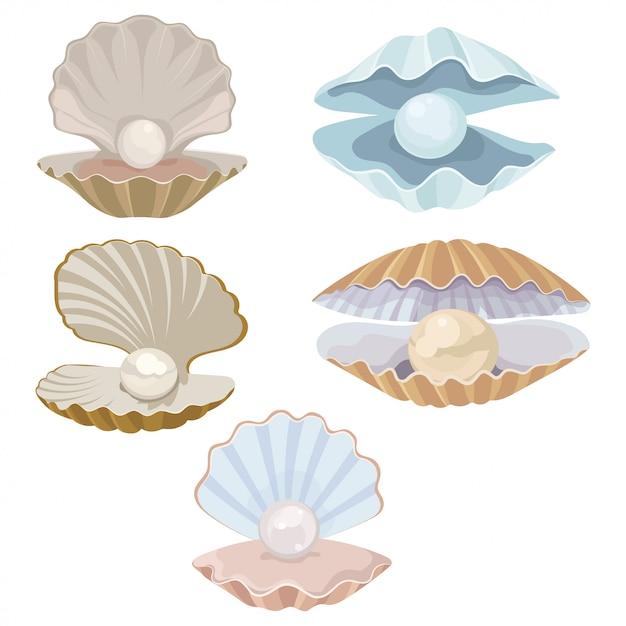 Conjunto de concha de dibujos animados con una perla. concha. ilustración de una almeja. Vector Premium