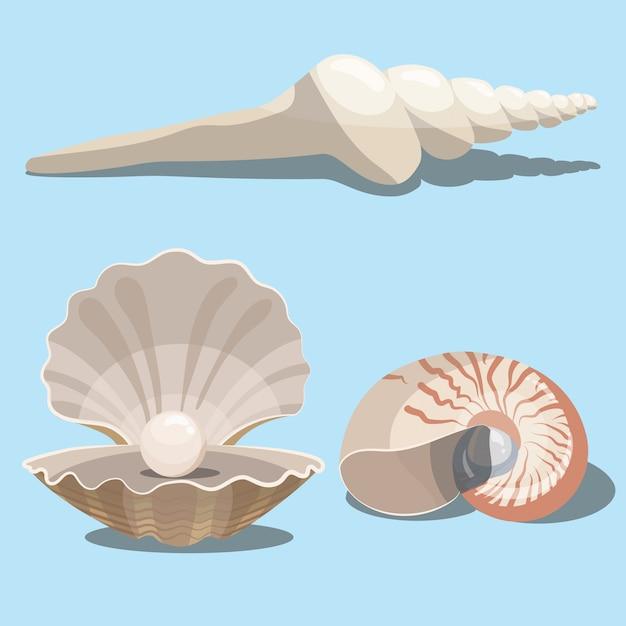 Conjunto de conchas marinas de dibujos animados. una colección de conchas marinas con perlas. ilustración de moluscos. Vector Premium