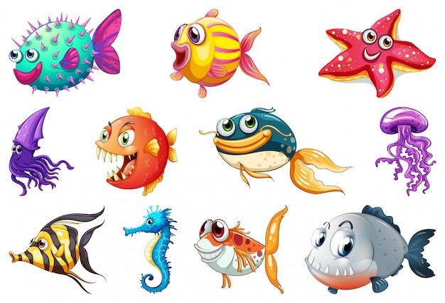 Conjunto de criatura marina vector gratuito