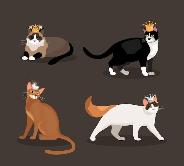 Conjunto de cuatro gatos con coronas con pieles de diferentes colores, uno de pie, caminando, acostado y sentado, ilustración vectorial vector gratuito