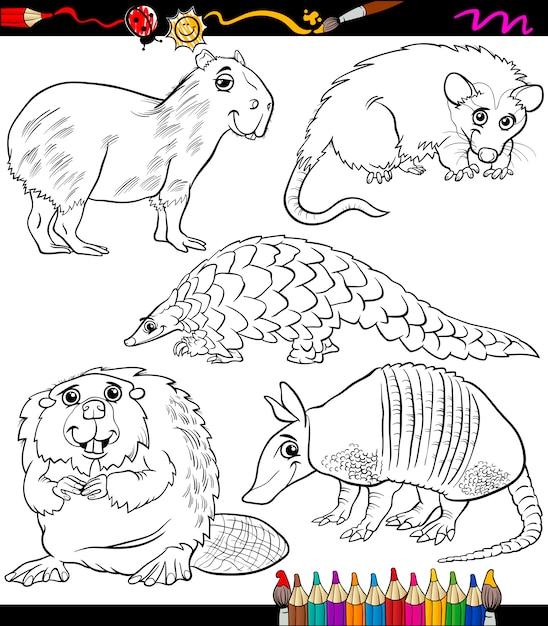 Conjunto de animales dibujos animados libro para colorear ...