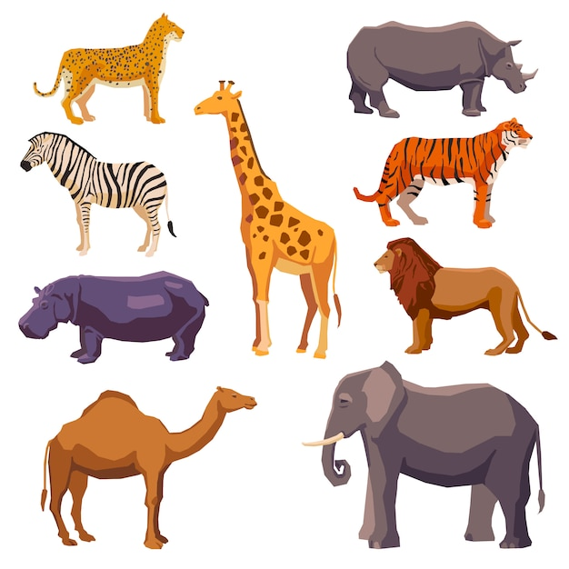 Conjunto decorativo animal de áfrica vector gratuito