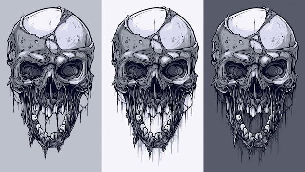 Conjunto detallado de cráneos humanos en blanco y negro gráfico. Vector Premium