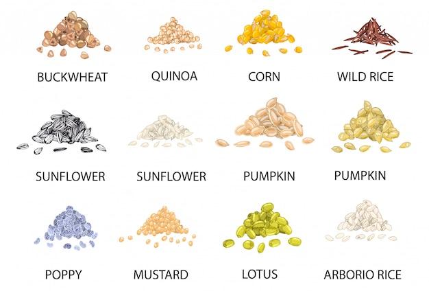 Conjunto de dibujado a mano pilas de granos de cereales de colores. Vector Premium