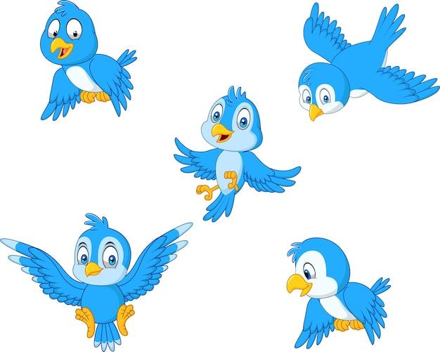 Conjunto De Dibujos Animados Colección De Aves Azules