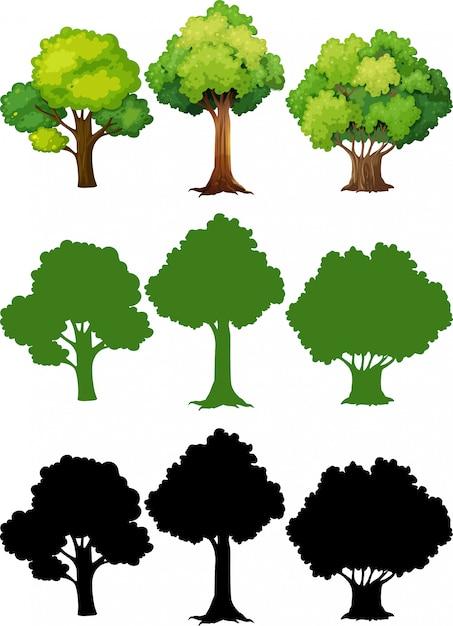 Conjunto de diferentes arboles vector gratuito