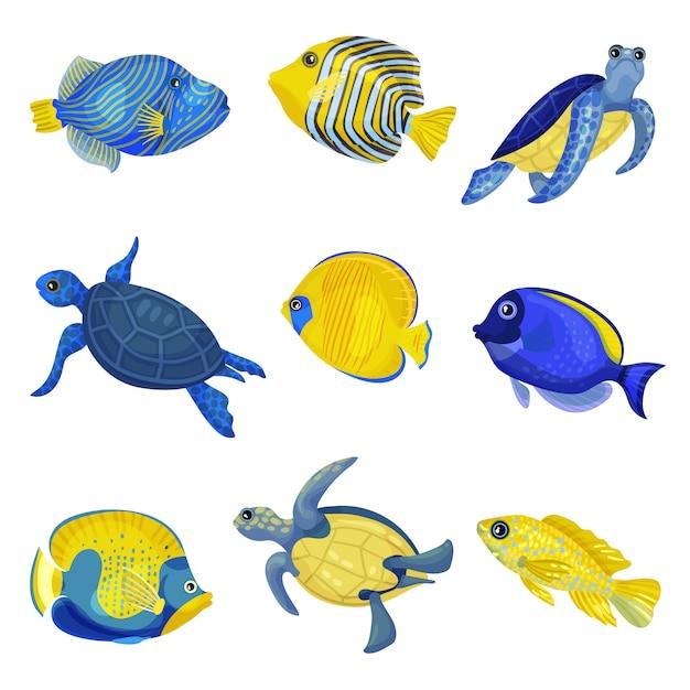 Conjunto de diferentes peces exóticos y tortugas. Vector Premium