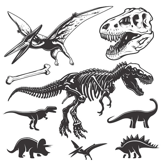 Conjunto de dinosaurios monocromáticos. elementos de arqueología. cráneo y esqueleto de t-rex. iconos de dinosaurios. vector gratuito