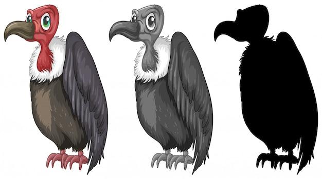 Conjunto de diseño de personajes buitre. Vector Premium