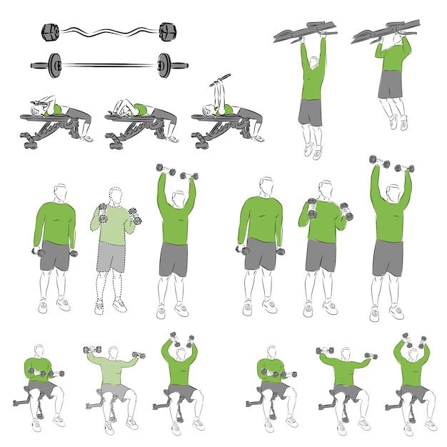 descargar libro de ejercicios de musculacion
