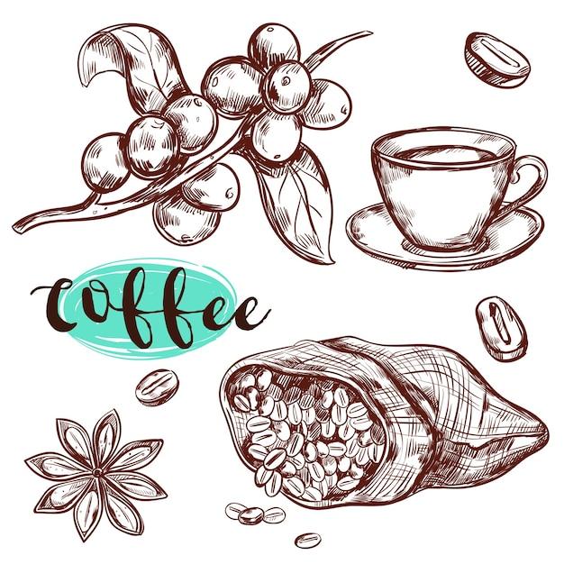 Conjunto de elementos de rama de café vector gratuito