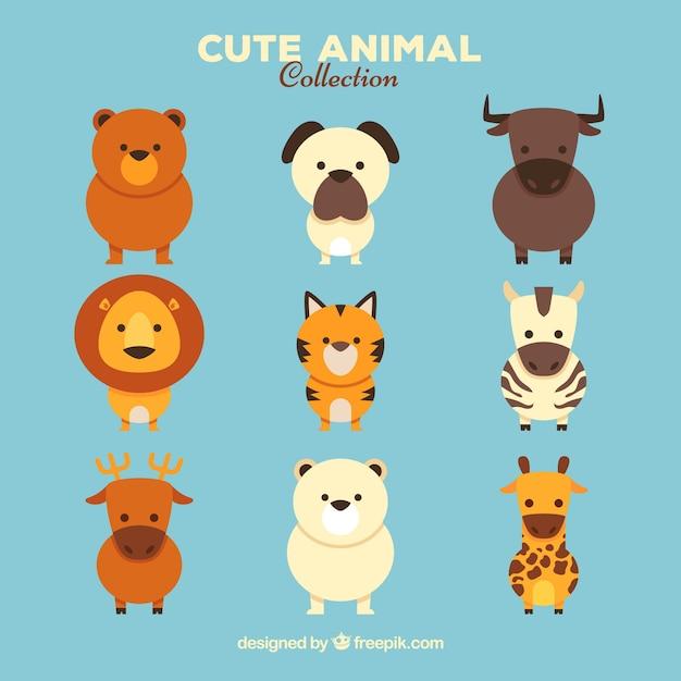 5a36bea17 Conjunto especial de animales bonitos vector gratuito