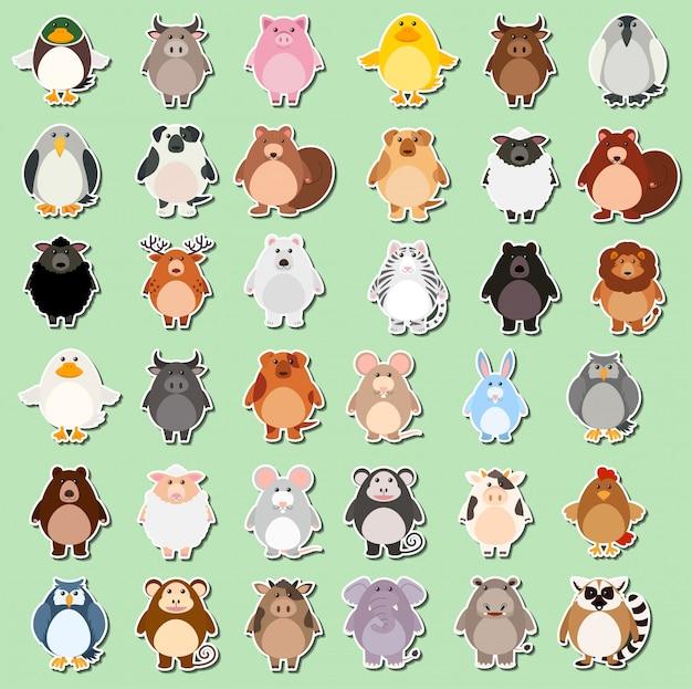 Conjunto de etiqueta de dibujos animados de animales Vector Premium